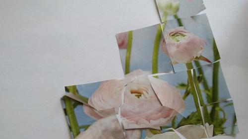 Obrazek galerii grupa IV część 5